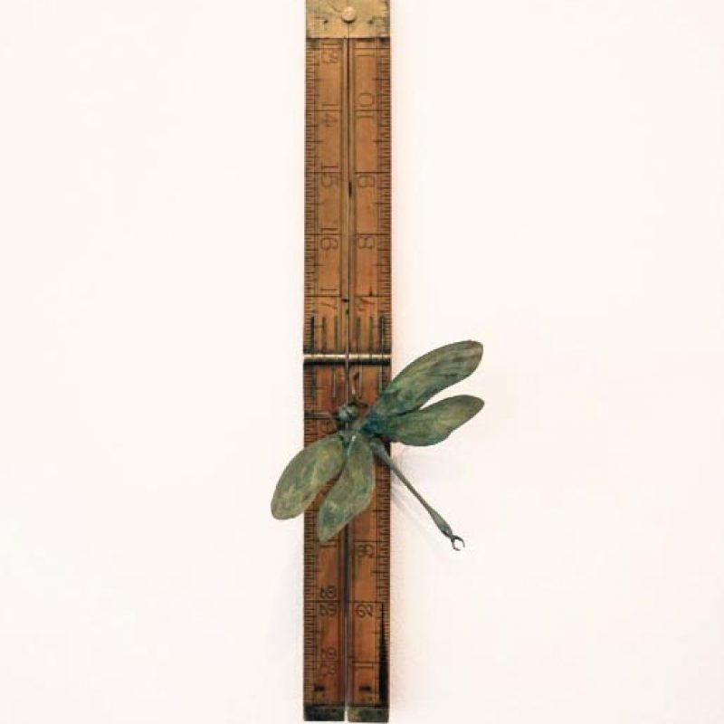 Patrick Haines Soul Measure I, Bronze Dragonfly, Ruler Ed. 10