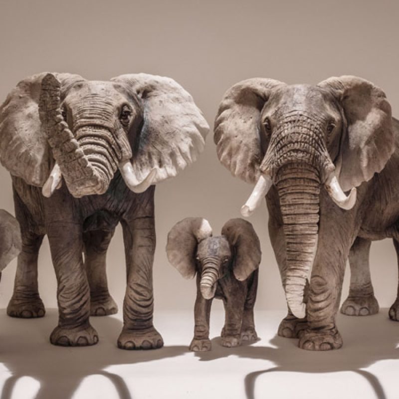 Nick Mackman 'Brief Encounter' (detail) from left: E2. Baby Elephant, E3. Large Adult Elephant, E4. Baby Elephant, E5. Large Adult Elephant and E6. Juvenile Elephant, All Low-fired ceramic