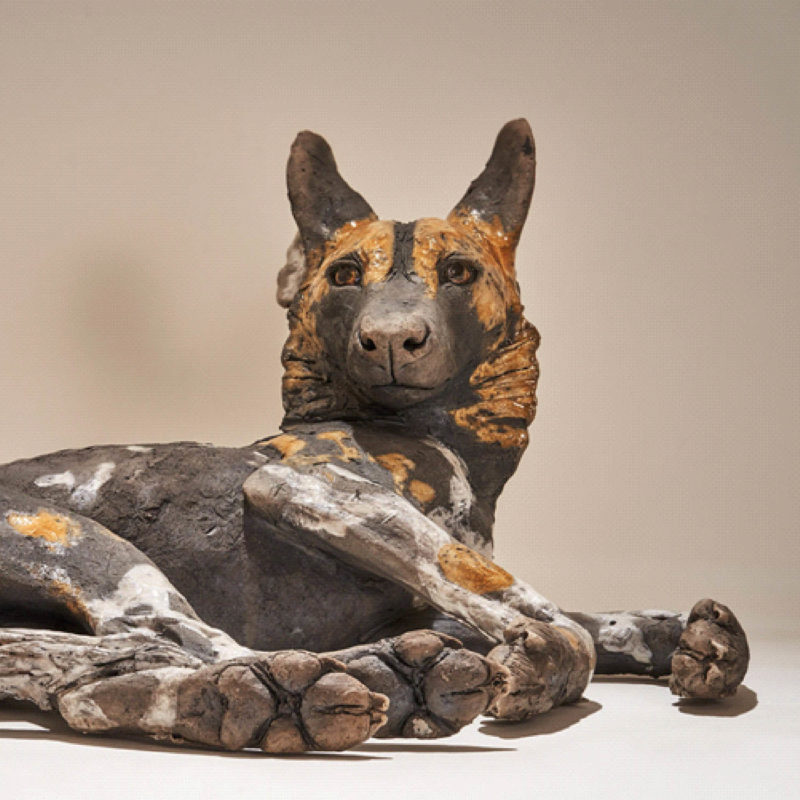 Nick Mackman Wild Dog Pup #2 Low Fired Ceramic 41 x 33 x 20 cm.