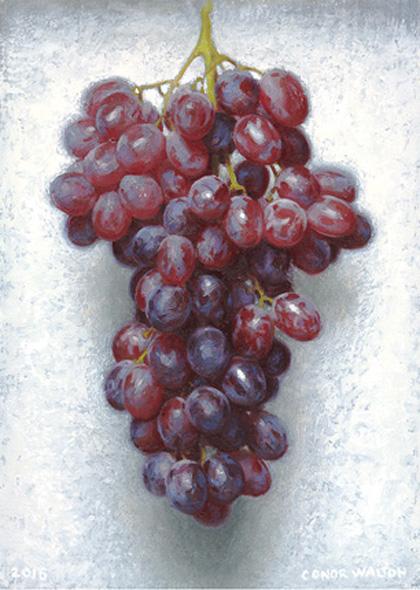 Conor Walton Grapes, Oil on linen 25 x 35 cm