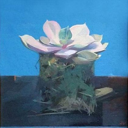 Jason Walker Succulent, Oil on board 27 x 22 cm