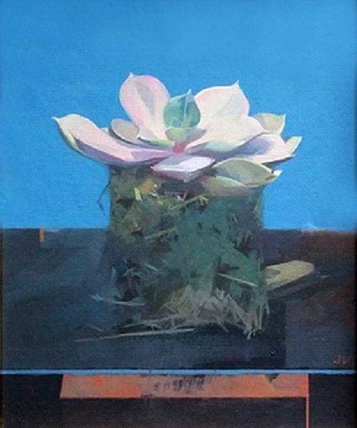 Jason Walker Succulent, Oil on board 27 x 22 cm