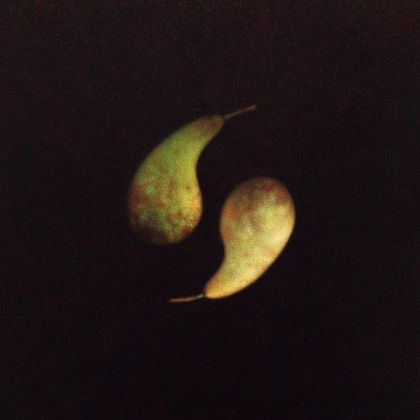 Atsuko Fujii Pears, Acrylic on canvas 35 x 27 cm.
