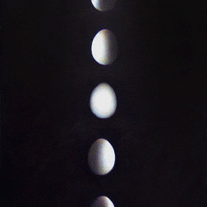 Lunar Egg, Acrylic on canvas 41 x 18 cm.