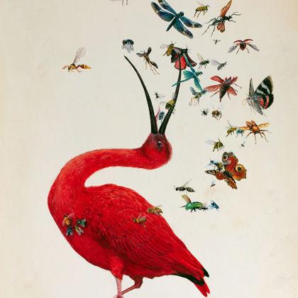 Lucy Eglington On Stranger Shores, Watercolour on Paper 59 x 39 cm.