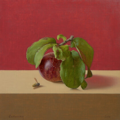 Alex Callaway Elgar's Apple, Oil on linen panel 28 x 28 cm