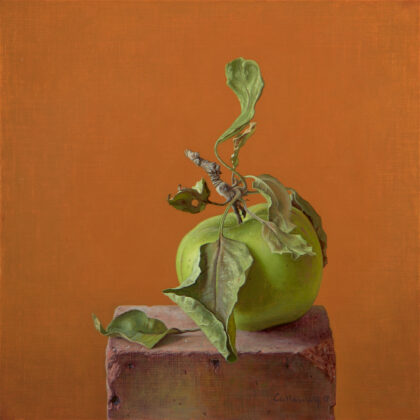 Alex Callaway Green Apple on a Brick, Oil on linen panel 30 x 30 cm.