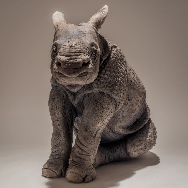 Nick Mackman Indian Rhino Baby, Low-fired ceramic h33 x w22 x l42 cm