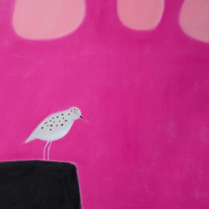 Andrew Squire Sanderling, Oil on board 90 x 75 cm.
