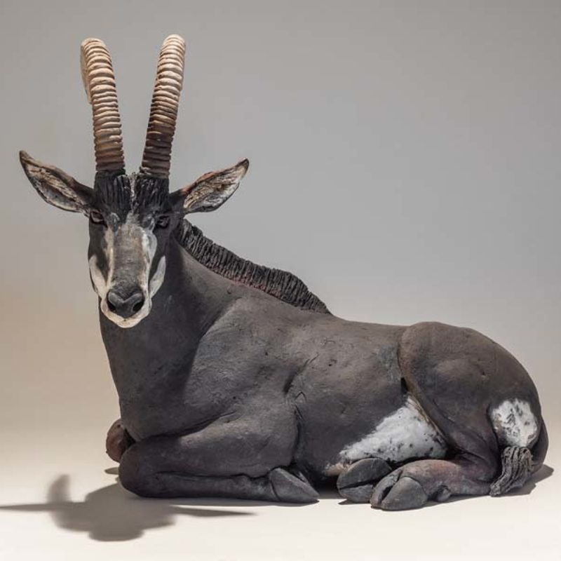 Nick Mackman Sable Antelope #3, Low-fired ceramic L31 x W25 x H19 cm.