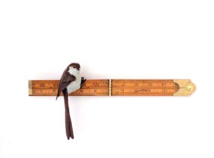 Patrick Haines Anima, Bronze bird and antique ruler Ed. of 25 w31 x h15 x d7 cm.