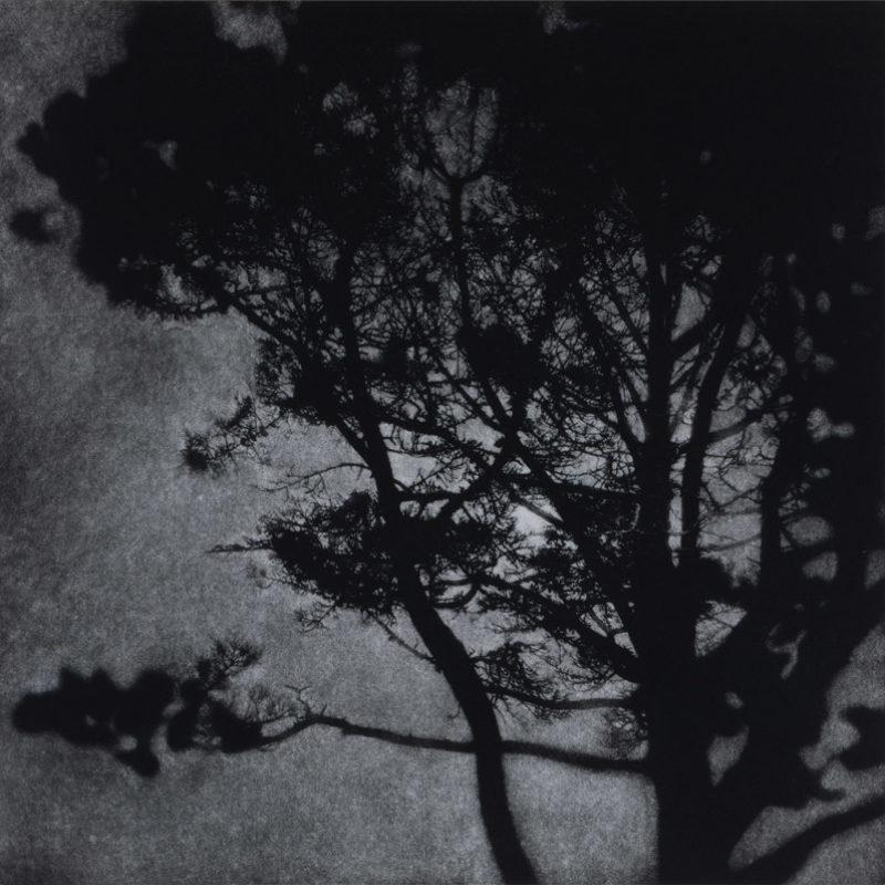 Sarah Gillespie Night in the Tiltyard, Mezzotint Edition of 40 50 x 50 cm.