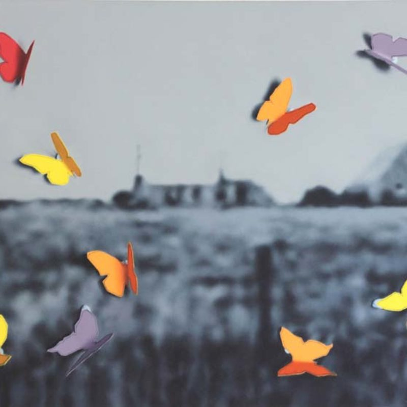 Donald MacDonald Butterflies at the Crofthouse, Oil on Canvas 78 x 111cm.