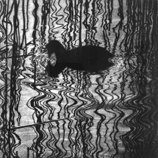 Sarah Gillespie Crepuscule, Mezzotint Ed. of 16 20 x 20 cm.