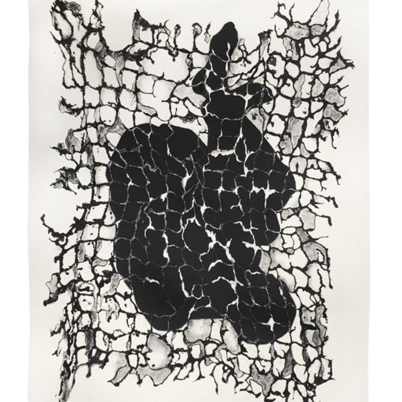 Anna Gillespie, Net #3, Gesso, charcoal and chalk