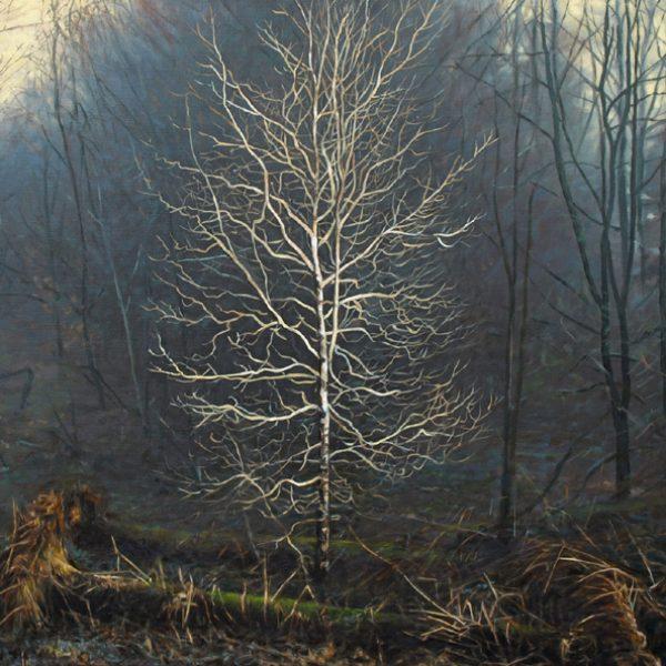 Winter Light in Torlum Wood, Oil on Linen 60 x 80 cm.