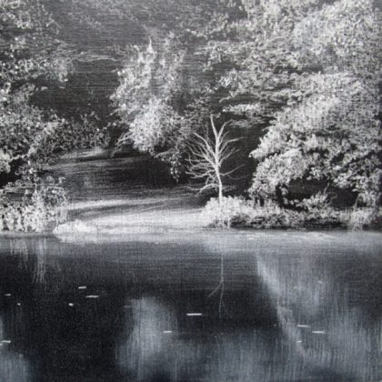 Reflections Abbots Pool, Pastel and Acrylic on Board 36 x 40.5 cm. £500